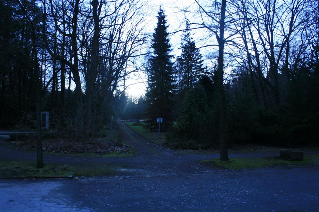 cemetery 042 (Large).jpg