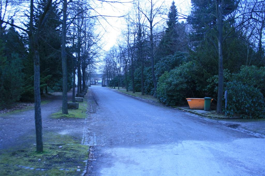 cemetery 043 (Large).jpg
